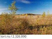 Купить «Осенний пейзаж», фото № 2326890, снято 10 октября 2010 г. (c) Дмитрий Яковлев / Фотобанк Лори