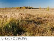 Купить «Осенний пейзаж», фото № 2326898, снято 10 октября 2010 г. (c) Дмитрий Яковлев / Фотобанк Лори