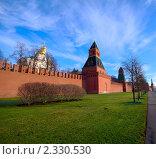 Башни Кремля в солнечный день (2010 год). Стоковое фото, фотограф Roman Firsov / Фотобанк Лори