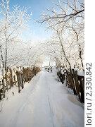 Сельская дорога зимой. Стоковое фото, фотограф Roman Firsov / Фотобанк Лори