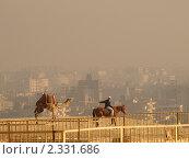 Верблюд с погонщиком на фоне Каира под смогом (2010 год). Редакционное фото, фотограф Константин Болотин / Фотобанк Лори