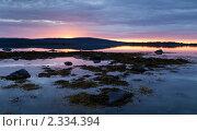 Белая ночь над заливом Белого моря. Стоковое фото, фотограф Михаил Иванов / Фотобанк Лори