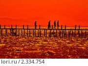 Закат на берегу Красного моря. Стоковое фото, фотограф Валерий Баришполец / Фотобанк Лори
