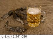 Пиво. Стоковое фото, фотограф Светлана Мамина / Фотобанк Лори