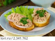 Купить «Быстрые бутерброды с луком и печенью трески», эксклюзивное фото № 2341762, снято 11 февраля 2011 г. (c) Александр Курлович / Фотобанк Лори