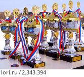 Купить «Призовые кубки и медали», эксклюзивное фото № 2343394, снято 13 февраля 2011 г. (c) Евгений Ткачёв / Фотобанк Лори