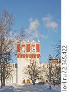 Купить «Башня. Новодевичий монастырь. Москва», эксклюзивное фото № 2345422, снято 31 января 2011 г. (c) stargal / Фотобанк Лори