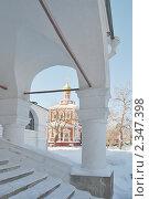Купить «Новодевичий монастырь. Москва», эксклюзивное фото № 2347398, снято 31 января 2011 г. (c) stargal / Фотобанк Лори