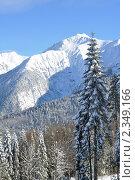 Горы Сочи, зимний пейзаж. Стоковое фото, фотограф Анна Мартынова / Фотобанк Лори