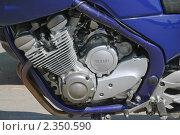 Фрагмент мотоцикла Yamaha Diversion (2010 год). Редакционное фото, фотограф Алёшина Оксана / Фотобанк Лори