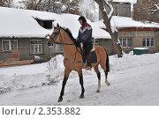 Купить «Тренировка лошади на Московском ипподроме», эксклюзивное фото № 2353882, снято 11 февраля 2011 г. (c) lana1501 / Фотобанк Лори