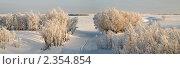 Зимний пейзаж. Стоковое фото, фотограф Сергей Салдаев / Фотобанк Лори