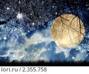 Полнолуние. Стоковая иллюстрация, иллюстратор Карелин Д.А. / Фотобанк Лори