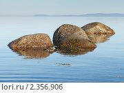 Купить «Камни Белого моря», фото № 2356906, снято 7 июля 2010 г. (c) Михаил Иванов / Фотобанк Лори