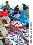 Купить «Улов», фото № 2359286, снято 21 июня 2010 г. (c) Александр Подшивалов / Фотобанк Лори