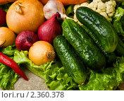 Купить «Овощи», фото № 2360378, снято 4 октября 2007 г. (c) Тарханов Николай Алексеевич / Фотобанк Лори