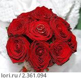 Букет красных роз с обручальными кольцами в руках невесты. Стоковое фото, фотограф Татьяна Метельская / Фотобанк Лори