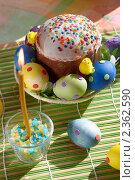 Купить «Пасхальный кулич и яйца», фото № 2362590, снято 19 апреля 2009 г. (c) Ольга Красавина / Фотобанк Лори