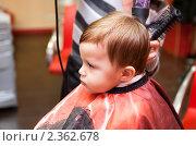 Купить «Первая стрижка», фото № 2362678, снято 21 февраля 2011 г. (c) Руслан Керимов / Фотобанк Лори
