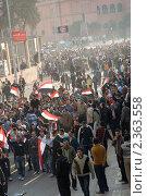 Купить «Египетская революция», фото № 2363558, снято 11 февраля 2011 г. (c) nadegdaf / Фотобанк Лори