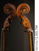 Купить «Скрипка крупным планом на сером фоне и ее отражение», фото № 2365798, снято 10 февраля 2011 г. (c) Дмитрий Черевко / Фотобанк Лори