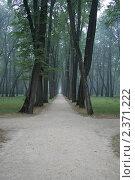 Купить «Дорожки парка в Спасском-Лутовинове», фото № 2371222, снято 13 августа 2010 г. (c) Удодов Алексей / Фотобанк Лори