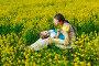 Счастливая мама с дочкой в поле желтых цветов, фото № 2375466, снято 15 мая 2010 г. (c) Podvysotskiy Roman / Фотобанк Лори