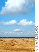 Купить «Сельский пейзаж со скошенным полем и сеном», фото № 2380606, снято 22 августа 2008 г. (c) Татьяна Белова / Фотобанк Лори