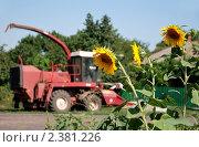 Купить «Красный комбайн и подсолнухи», фото № 2381226, снято 27 июля 2010 г. (c) Darkbird77 / Фотобанк Лори
