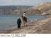 Прогулка на верблюде (2011 год). Редакционное фото, фотограф Влад Куликов / Фотобанк Лори