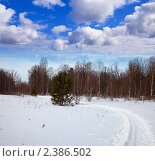 Купить «Зимний пейзаж», фото № 2386502, снято 28 февраля 2011 г. (c) Яков Филимонов / Фотобанк Лори