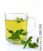 Купить «Чай с мятой», фото № 2386506, снято 20 сентября 2010 г. (c) Елена Завитаева / Фотобанк Лори