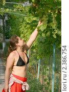 Купить «Девушка трогает ягоды неспелого винограда», фото № 2386754, снято 19 августа 2018 г. (c) Corwin / Фотобанк Лори