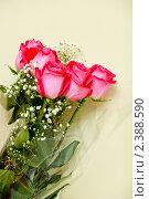 Букет роз. Стоковое фото, фотограф Виктор Березин / Фотобанк Лори
