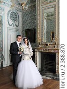 Купить «Свадебная пара», эксклюзивное фото № 2388870, снято 15 января 2011 г. (c) Дмитрий Неумоин / Фотобанк Лори