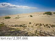 Купить «Песчаные дюны Куршской косы», фото № 2391666, снято 5 июля 2010 г. (c) Артём Сапегин / Фотобанк Лори