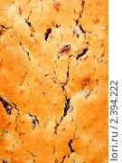 Купить «Потрескавшаяся поверхность кекса», фото № 2394222, снято 30 декабря 2010 г. (c) Андрей Востриков / Фотобанк Лори
