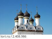 Купить «Москва. Церковь Покрова Пресвятой Богородицы в Братцево», эксклюзивное фото № 2408986, снято 9 марта 2011 г. (c) lana1501 / Фотобанк Лори
