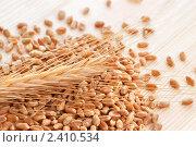 Купить «Пшеница с семенами», фото № 2410534, снято 5 декабря 2010 г. (c) Наталия Евмененко / Фотобанк Лори