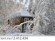 Бедная избушка (2011 год). Стоковое фото, фотограф Алла Вовнянко / Фотобанк Лори