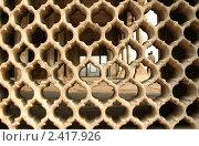 Купить «Каменный узор», фото № 2417926, снято 9 декабря 2009 г. (c) Вера Тропынина / Фотобанк Лори