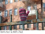 Варежка. Стоковое фото, фотограф Олег Циулин / Фотобанк Лори