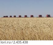 Комбайны в поле убирают пшеницу. Стоковое фото, фотограф Мударисов Вадим / Фотобанк Лори
