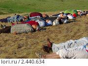 """Группа мужчин и женщин лежит на траве на склоне холма для того, чтобы """"зарядиться жизненной энергией"""". Историко-культурный заповедник Аркаим 21 июня 2010 года. Редакционное фото, фотограф Александр Овчаров / Фотобанк Лори"""