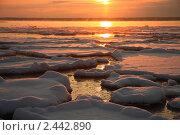 Водный ночной пейзаж. Эстония. Стоковое фото, фотограф Вероника Горбова / Фотобанк Лори