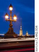 Купить «Санкт-Петербург.Фонарь Троицкого моста», эксклюзивное фото № 2442934, снято 7 апреля 2020 г. (c) Литвяк Игорь / Фотобанк Лори