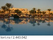 Купить «Утро в отеле.Египет», эксклюзивное фото № 2443042, снято 28 октября 2010 г. (c) Svet / Фотобанк Лори