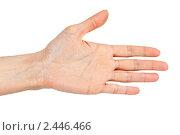 Купить «Женская ладонь, протянутая для приветствия», фото № 2446466, снято 24 марта 2011 г. (c) Руслан Кудрин / Фотобанк Лори