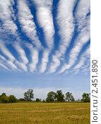 Купить «Необычные облака над убранным пшеничным полем», фото № 2451890, снято 10 сентября 2010 г. (c) Олег Рубик / Фотобанк Лори