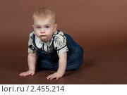 Купить «Маленькая девочка ползёт по полу, студийный портрет», фото № 2455214, снято 19 ноября 2010 г. (c) Екатерина Упит / Фотобанк Лори